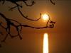 солнечные  паутинки 1