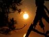 солнечные  паутинки 2