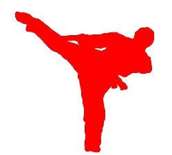 Red karateka